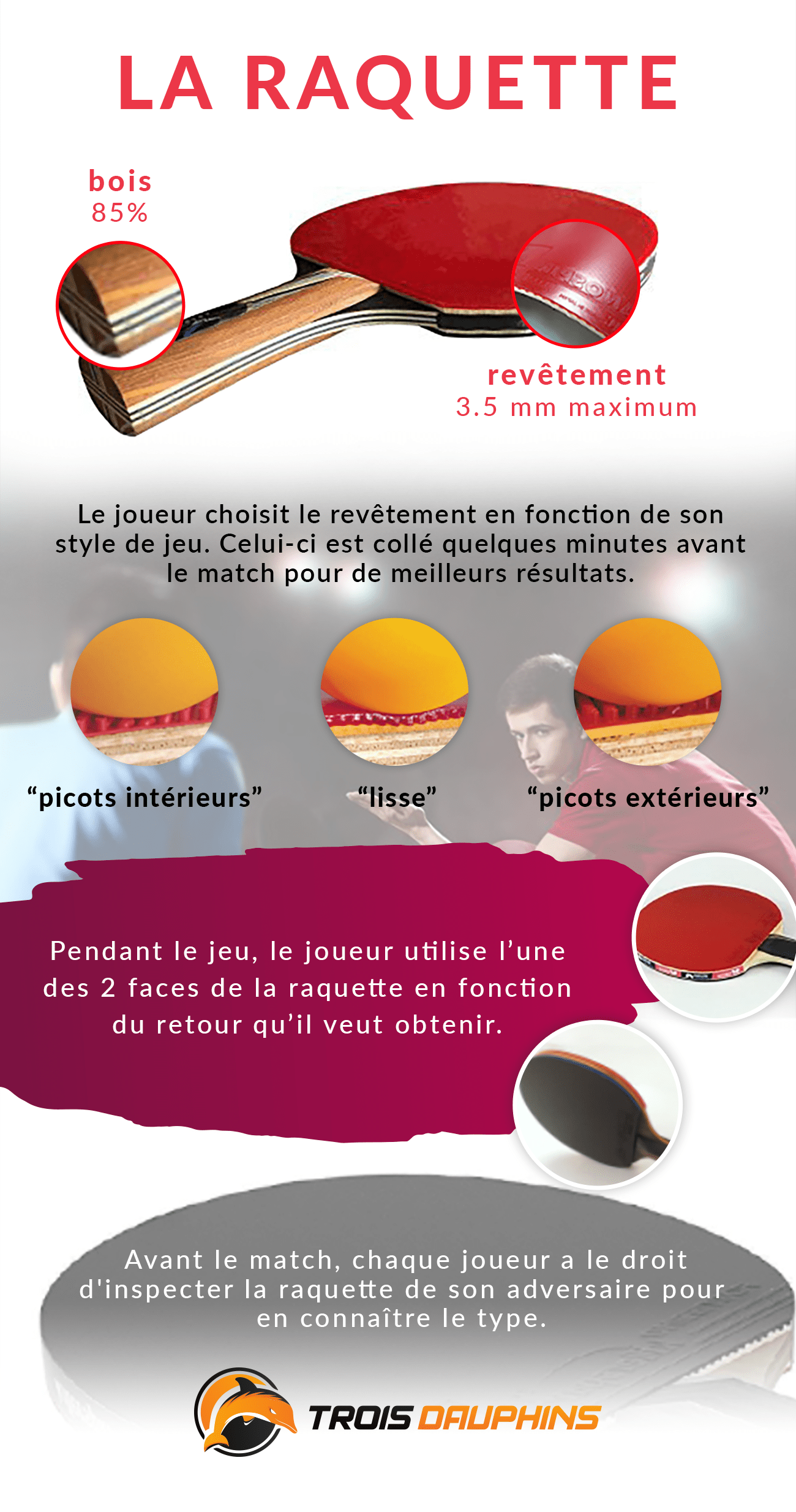 structure raquette ping pong